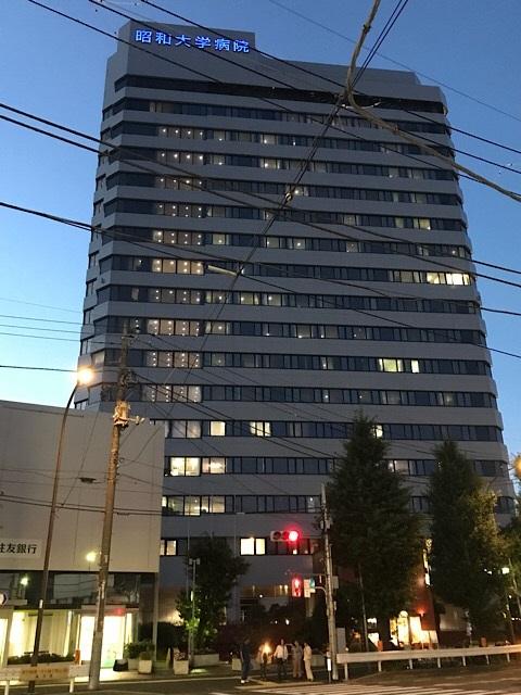 旗の台駅 昭和大学病院 遠景