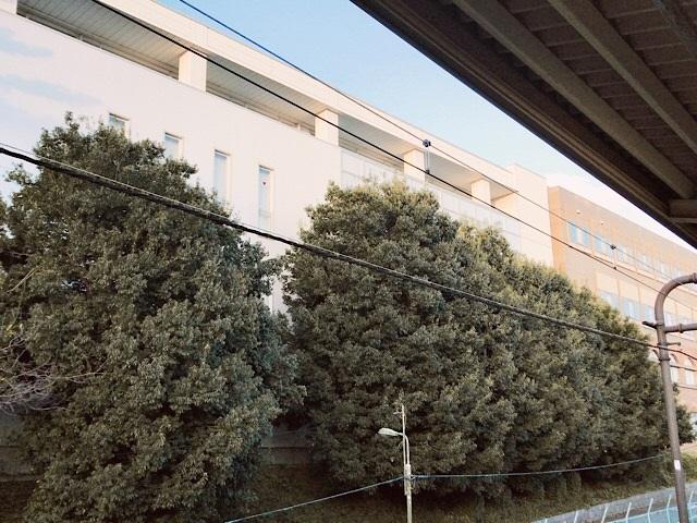 駒場東大前 車窓からの景色