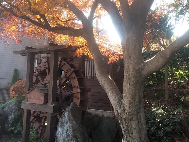 林試の森公園 水車小屋の脇