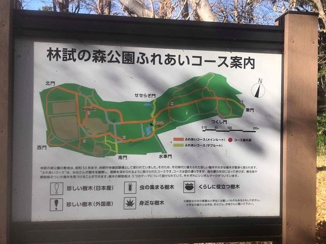 林試の森公園 ふれあいコース