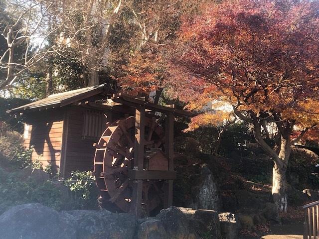 林試の森公園 水車小屋
