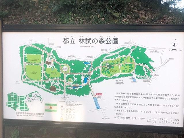 林試の森公園 公園全体マップ