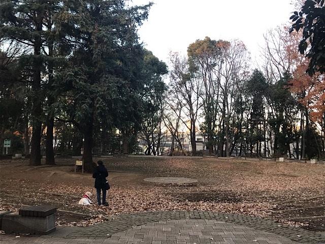 林試の森公園 犬の広場