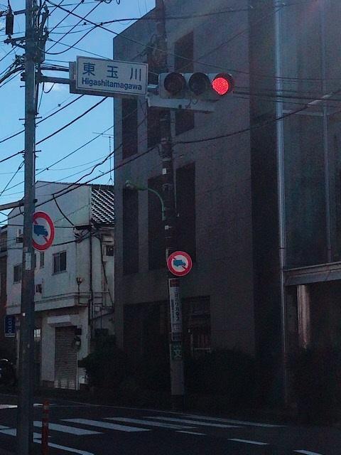 奥沢小学校 写真 5