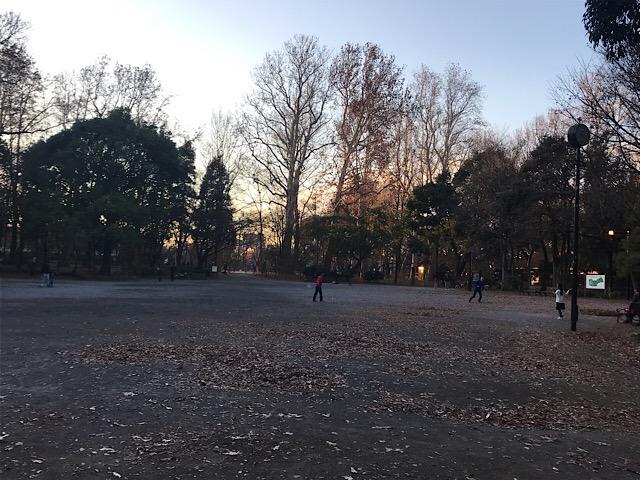 林試の森公園 バドミントンの広場